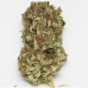 Buy OG Kush Weed Online